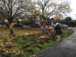 Bulb planting 2015