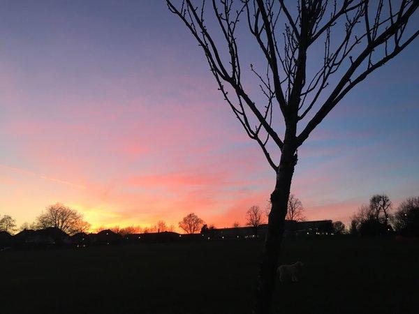 Sunset over QPCS