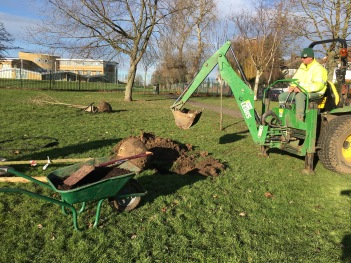 Planting trees Tiverton Green (NE side)
